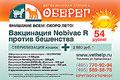 Ветеринарные клиники «Оберег» расположены в районах Алтуфьево и Гольяново. Обе клиники работают КРУГЛОСУТОЧНО. Если Вашему питомцу требуется квалифицированная помощь ветеринарного врача, позвоните к нам в клинику – мы постараемся Вам помочь.
